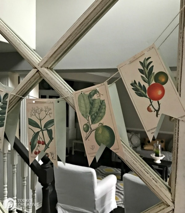 free turntables: botanical prints on mirror