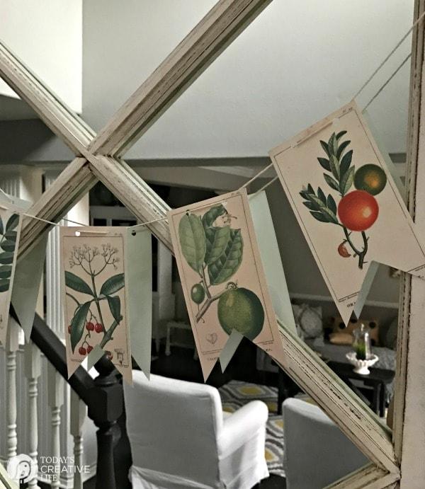 free turntables: botanical prints on mirror